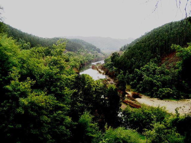 Coimbra (area), River Mondego