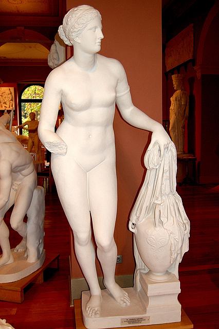 Afrodito