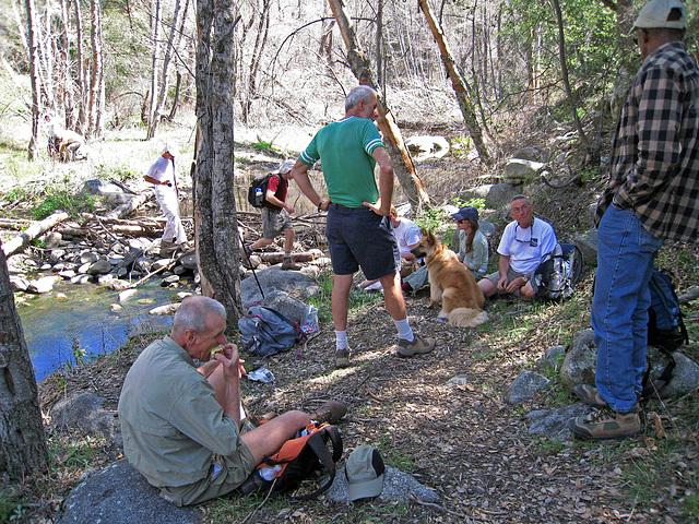 South Fork Of The San Jacinto Creek (0374)