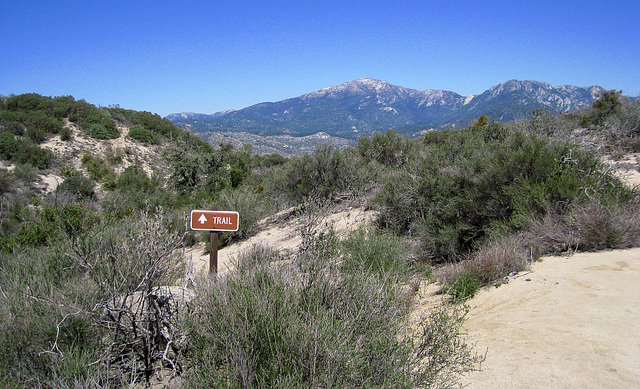 Trail to South Fork Of The San Jacinto Creek (0376)