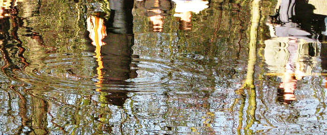 Watery reflections
