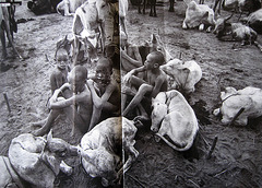 Sebastião Salgado, Dinkas from SUDAN, everyday life (1)