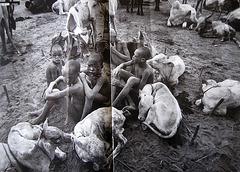 Sebastião Salgado, Dinkas from SUDAN, everyday life (1)