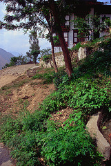 At the hill of Tashigang