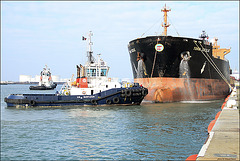 VB BARFLEUR &TORM CECILIE remorquage (Le Havre)