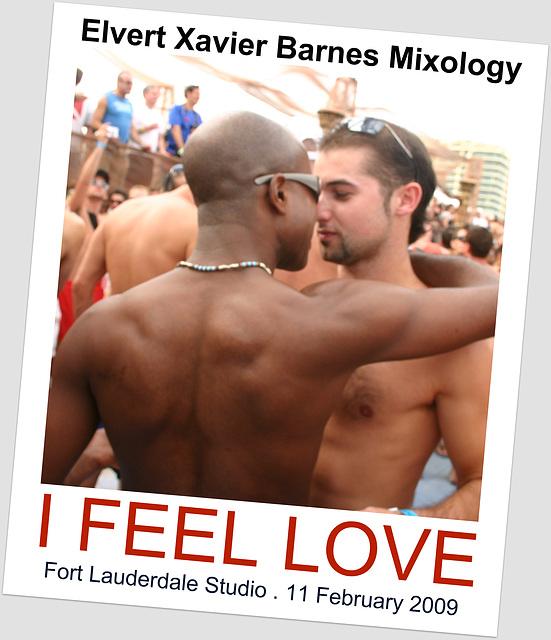I Feel Love - February 2009 - Elvert Barnes Mixology