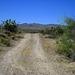 Bradshaw Trail (0499)