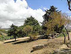 2012-07-24 Agrigento   22