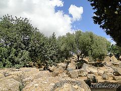 2012-07-24 Agrigento   174