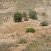 2012-07-24 Agrigento G  34