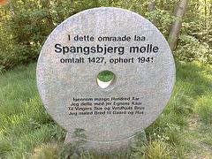 Spangsbjerg mill