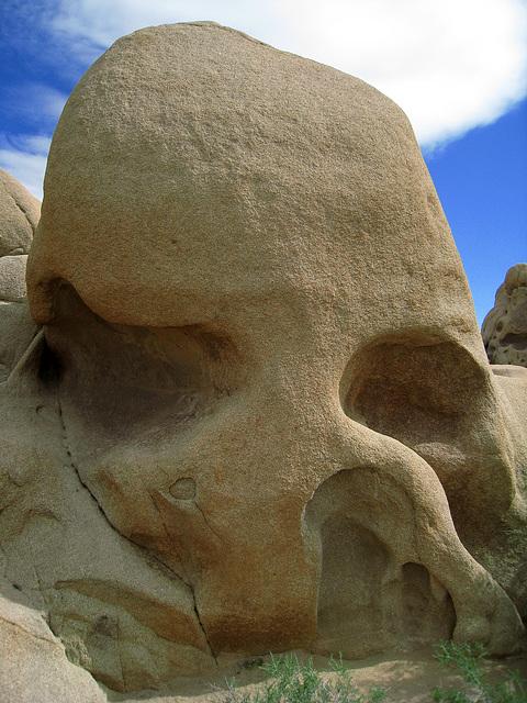 Skull Rock (0656)