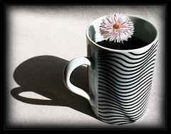 Blümchen-Kaffee
