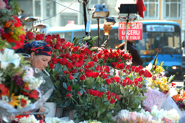 Istanbul Taksim Flowers