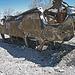 Wrecked Van (0527)