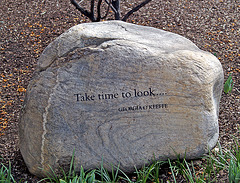 Take Time To Look