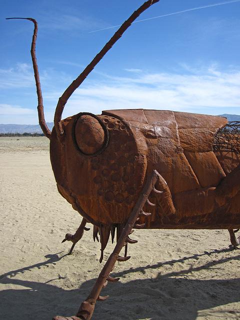 Ricardo Breceda's Scorpion & Grasshopper sculpture in Galleta Meadows Estate (4436)