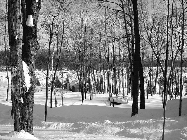 Near the famous abbey of St-Benoit-du-lac / Tout près de l'abbaye de St-Benoit-du-lac.  7 Février 2009 -  B & W