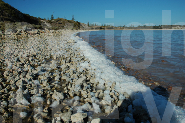 froth at the edge of the salt lake