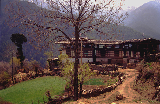Bhutanese farm house