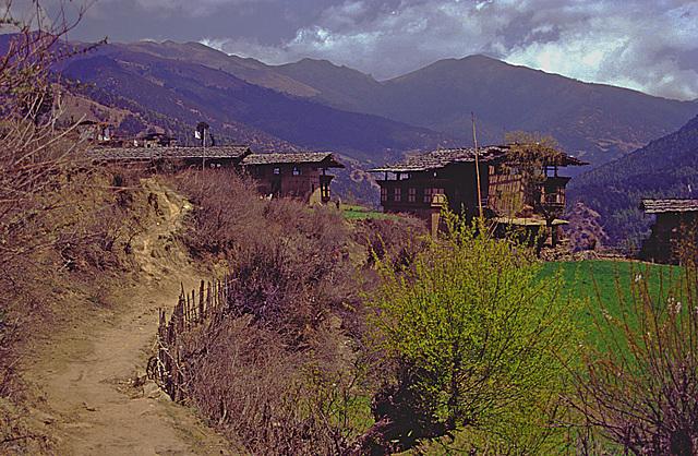 Genekha village