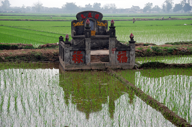 Tomb in a rice field