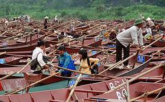 Boats, boats, boats, boats