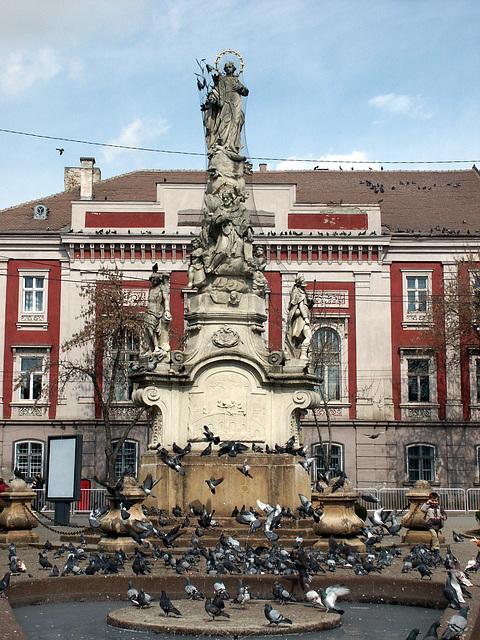 Piaţa Libertăţii - Timisoara