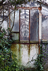 A grey day at the old greenhouse - 1