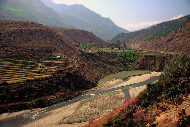 Tang Chhu (river) near Wangdue Phodrang