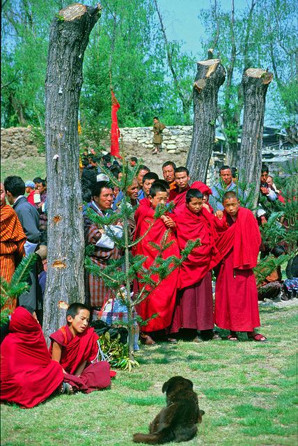 Monks watching the women dancing performance