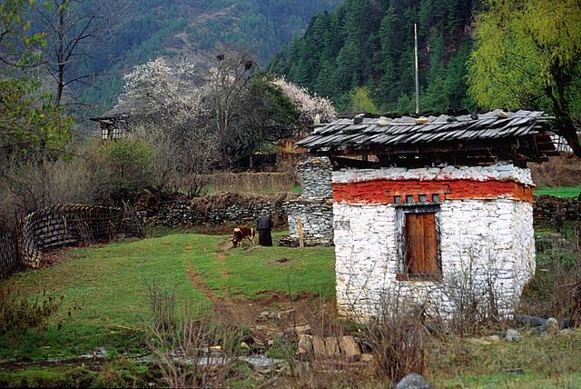 Nga Lhakhang village in Bumthang district