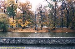 Fall Colors, Picture 6, Strelecky Ostrov, Prague, CZ, 2007