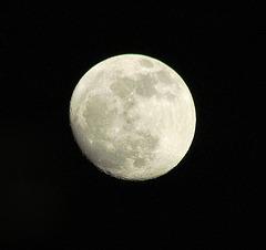 L' Astre de la nuit illumine mes yeux !