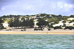Lamu - Shela Beach