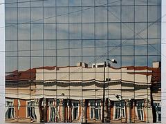 reflexii timisorene
