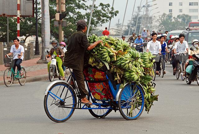 Banana Transporter