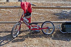 Seatless Big-Pedaled Boardrunner Bike (0036)