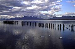 Puerto Natales - Morning