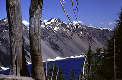 Crater Lake - Trees