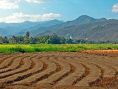 Landscape in northern Thailand