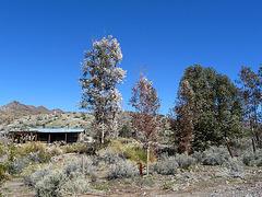 Barker Ranch (3236)