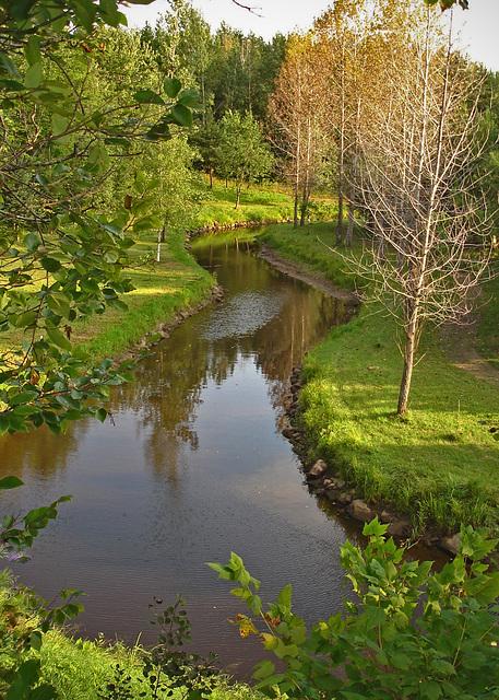 La petite rivière au bas de la colline  / The little river down by the hill.