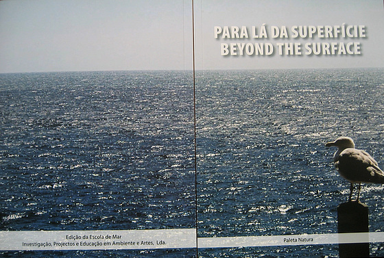 """Beyond the Surface"", cover of the book for awareness and public information on marine science"