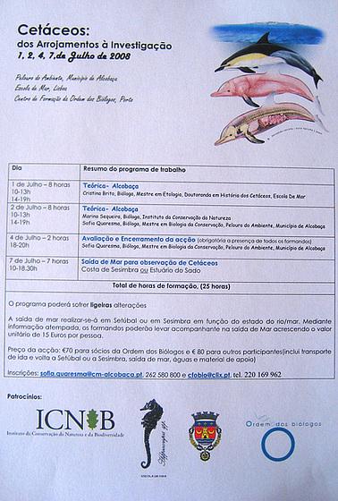 """Escola de Mar """"School of Sea"""", Cetacean Course: from Animal Ashores to Investigation, 1, 2, 4 & 7 July 2008"""