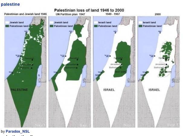 Palestine : la peau de chagrin