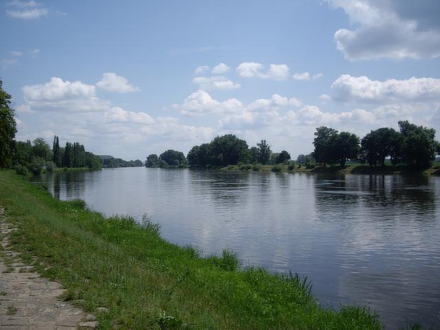 an der Elbe bei Litoměřice