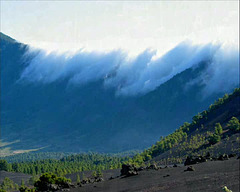 Vulkanwanderung - Ruta de los vulcanos auf LA PALMA - Isla Bonita
