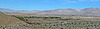 Coachella Valley Preserve (2705)
