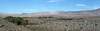 Coachella Valley Preserve (2710)